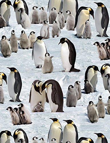 Fat Quarter Pinguine Schnee Winter Baumwolle Quilten Stoff 490Elizabeth 's Studio -