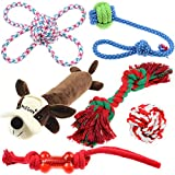 Well Love Dog Toys - Chew Toys - 100% Natural Cotton Rope - Squeak Toys - Dog Balls - Dog Bones - Plush Dog Toy - Dog Ropes - Tug of War Ball - Toys for Dog 6pack Gift Set BENEFIT NONPROFIT DOG RESCUE