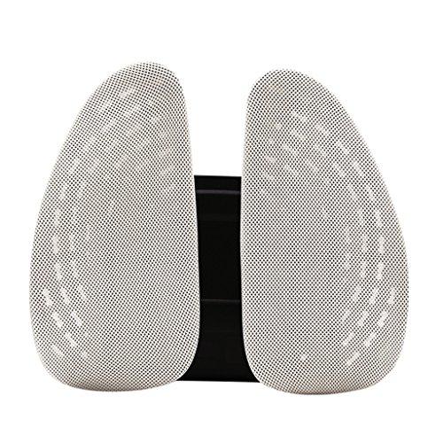 Scholls Rücken Schmerzlinderung (QIHANGCHEPIN Verstellbare bequeme Taille Unterstützung Rückenlehne - Polyester Mesh - Stress Schmerzen und Schmerzlinderung für den unteren Rücken und Haltung (Beige/Schwarz) (Farbe : Beige))
