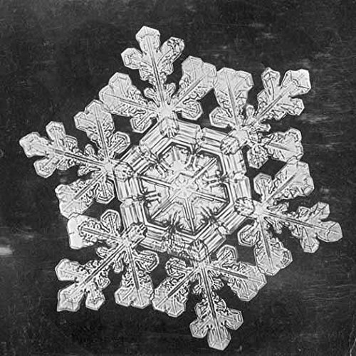 poster-snowflake-study-s-1890-image-id-ru-31-box-12-folder-17-wilson-a-bentley-first-became-fascinat