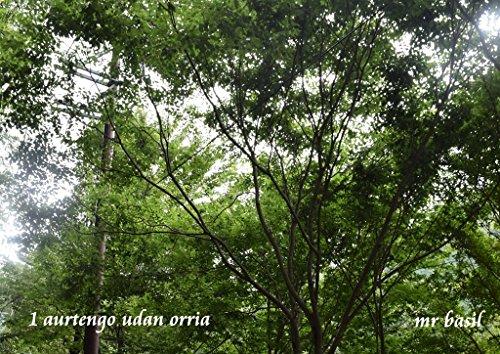 Descargar Libro 1 aurtengo udan orria (Basque Edition) de mr basil