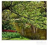 Wallario Herdabdeckplatte / Spitzschutz aus Glas, 1-teilig, 60x52cm, für Ceran- und Induktionsherde, Bunte Blumen im Park am Wasser - Frühblüher am Ufer