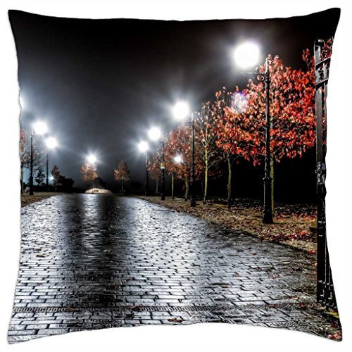 open gate in a rain storm - Throw Pillow Cover Case (16