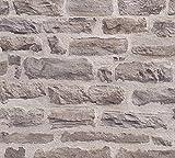 A.S. Création Vliestapete Best of Wood`n Stone 2nd Edition Tapete in Stein Optik fotorealistische Steintapete Naturstein 10,05 m x 0,53 m beige braun Made in Germany 355801 35580-1