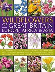 Wildflowers of Great Britain, Europe, Africa & Asia: A comprehensive encyclopedia and guide to the plant diversity of these continents, with ... than 675 maps, illustrations and photographs by Michael Lavelle (2007-09-21)