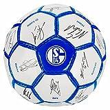 FC Schalke Ball Team 17