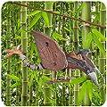 Simandra Windspiel Bambus Kokosnuss Holz handgefertigt Deko Entspannung Garten Türglocke Drachen von Simandra bei Du und dein Garten