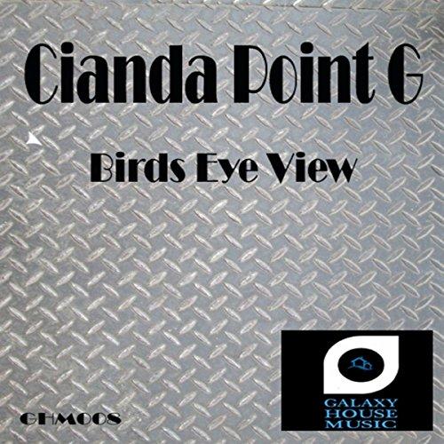 Birds Eye View (Original Mix) View Bird House