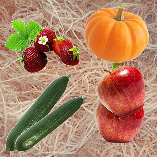 5kg Gartenholzwolle Gemüseholwolle Erdbeerholzwolle * Bio Qualität * PEFC Zertifiziert * sehr hell * aus Deutschem Wald - von unipak