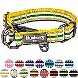 Blueberry Pet 2cm M 3M Reflektierendes Bunt Gestreiftes Gelb und Grün Hundehalsband für Mittelgroße Hunde