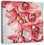 Rosane Orchideenblüten B&W Detail, Format: 70x70 auf Leinwand, XXL riesige Bilder fertig gerahmt mit Keilrahmen, Kunstdruck auf Wandbild mit Rahmen, günstiger als Gemälde oder Ölbild, kein Poster oder Plakat