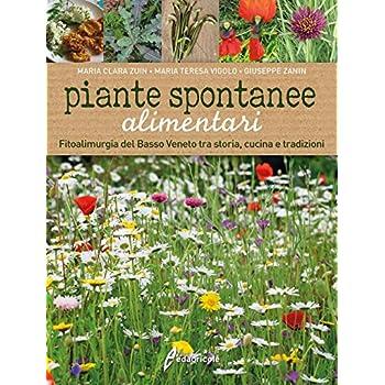 Piante Spontanee Alimentari. Fitoalimurgia Del Basso Veneto Tra Storia, Cucina E Tradizioni