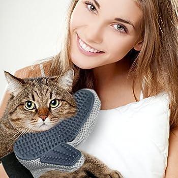 DakPets Gant type brosse pour le toilettage d?animaux de compagnie, pour chiens et chats, avec un bol pliable pour voyage