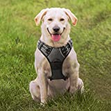 Dog Harness Front Clip Puppy Vest Harnesses no - Best Reviews Guide