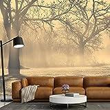 azutura Nebelhafte Bäume Fototapete Waldlandschaft Tapete Wohnzimmer Haus Dekor Erhältlich in 8 Größen Extraklein Digital