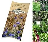Saatgut Set: 'Grill-Kräuter', 4 aromatische Kräutersorten zum Marinieren und Würzen von Steaks und Grillfleisch als Samen in hübscher Geschenk-Verpackung