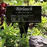 Acrylglas Kräuter Pflanztafel Eckig schwarz - Gartenstecker, Kräuterschilder, Pflanzenstecker - Auswahl, Kräutertafel - Auswahl:Bärlauch