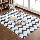 Boodtag Teppich Rutschfest Schlafzimmer Spielteppich Wohnzimmer Kurzflor Teppichmatten Baumwolle Kinderteppich (D, 70 x 180 cm)