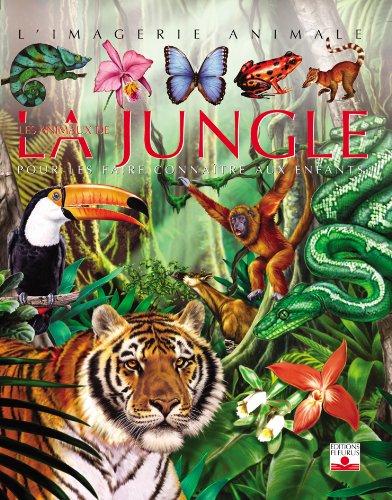 Les Animaux de la jungle : Pour les faire connaître aux enfants par Emilie Beaumont;Raphaëlle Chauvelot