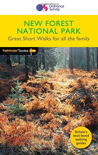 new-forest-national-park-2017