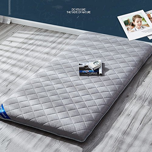 HYXL Stock-matratzenauflage,Weiche Gesteppte matratze protecto,Premium Allergiker-Geeignet Student matratze Schlafsaal Bett Skorpion Single Double Schlafzimmer-Tatami-matten -B 150x200cm(59x79inch)