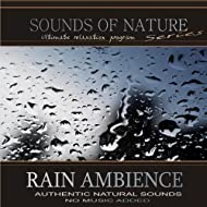 Rain Ambience