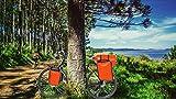 CROSSO® DRY SMALL 30 / DRY BIG 60 Gepäckträgertaschen | 30/60 Liter | Fahrradtaschen | Tarmaulin | 2 Taschen | Reflexionsstreifen | Wasserdicht, Crosso:26. Orange / 30L