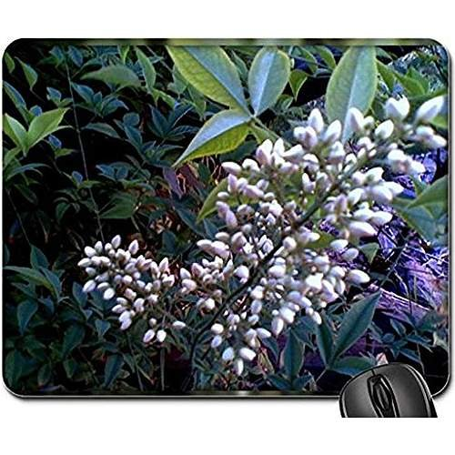 Beautiful bamboo flower Non-Slip Rubber Gaming Mouse Pad Size 9 Inch(220mm) X 7 Inch(180mm) X 1/8(3mm) (Flowers Mouse Pad) (Bamboo Slips)