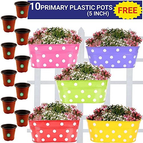 Trust Basket Dotted Oval Railing Planter, Set of 5 (Magenta, Purple, Green,...