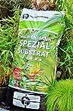Floragard Palmenmann Spezial-Substrat (45 Liter) - Spezialerde