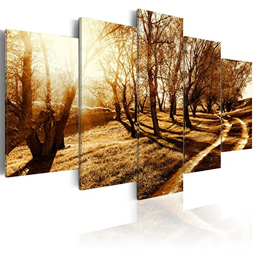 murando - Cuadro en Lienzo 200x100 cm - Naturaleza - Impresion en calidad fotografica - Cuadro en lienzo tejido-no tejido - Arbol Camina c-B-0029-b-p