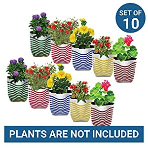 Trust Basket Stripe Grow Bags (Multicolour, Pack of 10)