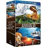 Animalia - Coffret - Ours polaires 3D + Dinosaures 3D, les géants de Patagonie + Prédateurs de l'océan 3D + Afrique sauvage 3D