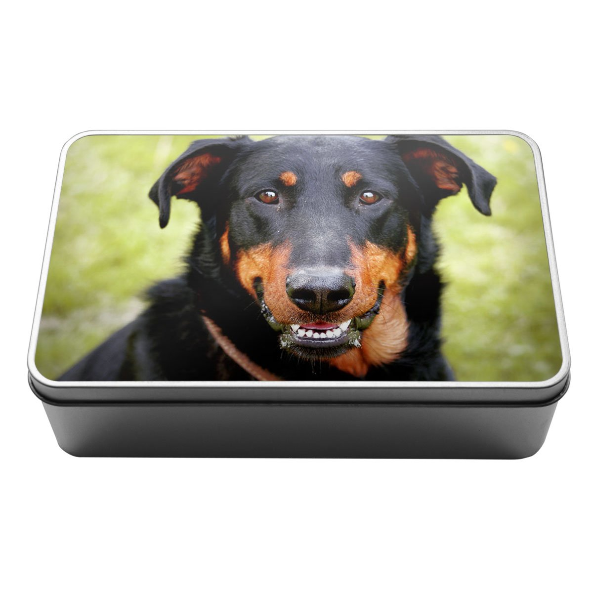 Beauceron Dog Animal Metal Storage Tin Box 031