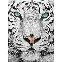 Glas-Bild Wandbilder Druck auf Glas 100x70 Deko Tiere Weißer Tiger