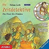 Die Zeitdetektive. Das Feuer des Druiden: Ein Krimi aus der Zeit der Gallier - Fabian Lenk