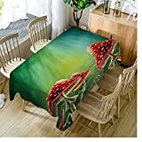 Best Green Forest Dining Tables - Moslion Tablecloth Green Flowers Mushroom Forest Magical Mystery Review