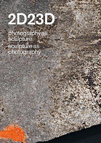 2D23D photography as sculpture sculpture as photography