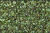 Sichtschutzstreifen aus 100 % formbeständigem PES | 26m x 19cm Rolle | Motiv: Kirschlorbeer