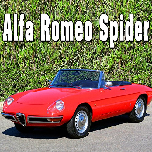Alfa Romeo Spider Hood Opened & Prop Bar Set (Spider Prop)