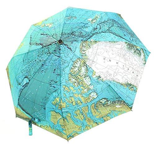 CHRISLZ Weltkarte Regenschirm Automatische Regenschirm Faltbar Sonnenschutz Regenschirm Winddichte Taschenschirm (Öffnen Aktentasche Gepäck Kleine)