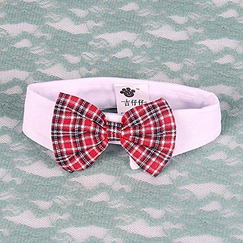 Eine karative schöne Baumwolle Krawatte für Haustier - rot mit Streifen (Britische Streifen-krawatte)