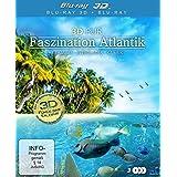 3D Pur – Faszination Atlantik: Paradies der Erde