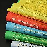 10PCS Tibet Shining Golden Worte Tara Buddhist Scripture Flaggen Zarte Druck Bunt Seide Gebetsfahnen mit 5Flagge