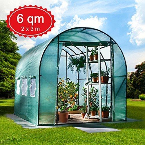 6m² Gewächshaus mit Stahlfundament Garten Treibhaus Tomatenhaus Pflanzenhaus Frühbeet Foliengewächshaus -