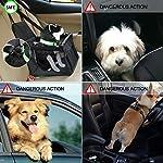 Aandyou Pet Car Booster Seat Breathable Waterproof Pet Dog Car Supplies Travel Pet Car Carrier Bag Seat Protector Cover… 10