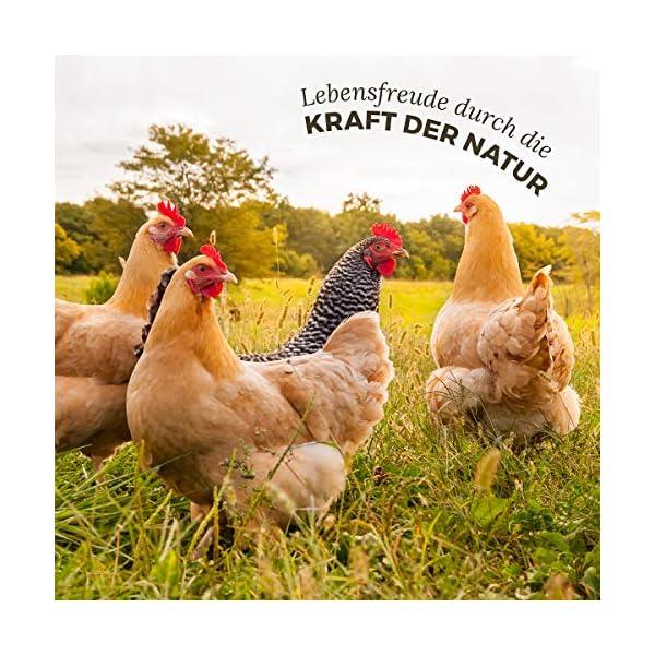 controllo esterno dei parassiti nel pollame