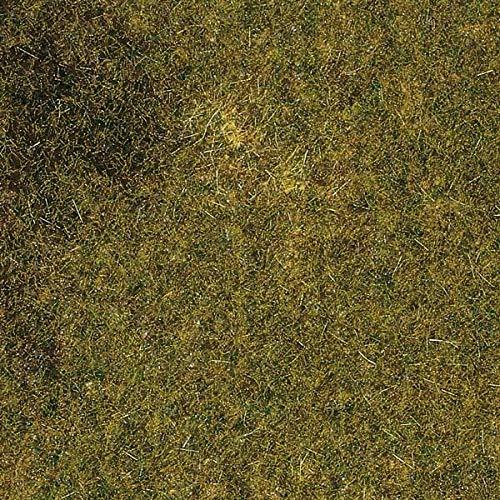 Auhagen 75.117,0 - Herbstwiesen Estera, 50 x 35 cm, Colorido