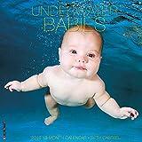 2016 Underwater Babies Wall Calendar by Seth Casteel (2015-08-16)