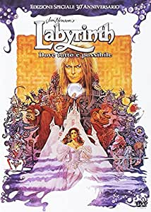 Labyrinth: Dove Tutto È Possibile - Edizione Speciale 30° Anniversario (DVD)